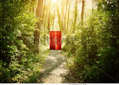 stock-photo-a-red-doorway-is-on-a-trail-in-the-woods-with-trees-for-a-concept-about-faith-freedom-or-383306167